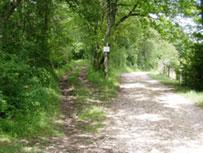 chemin-morville